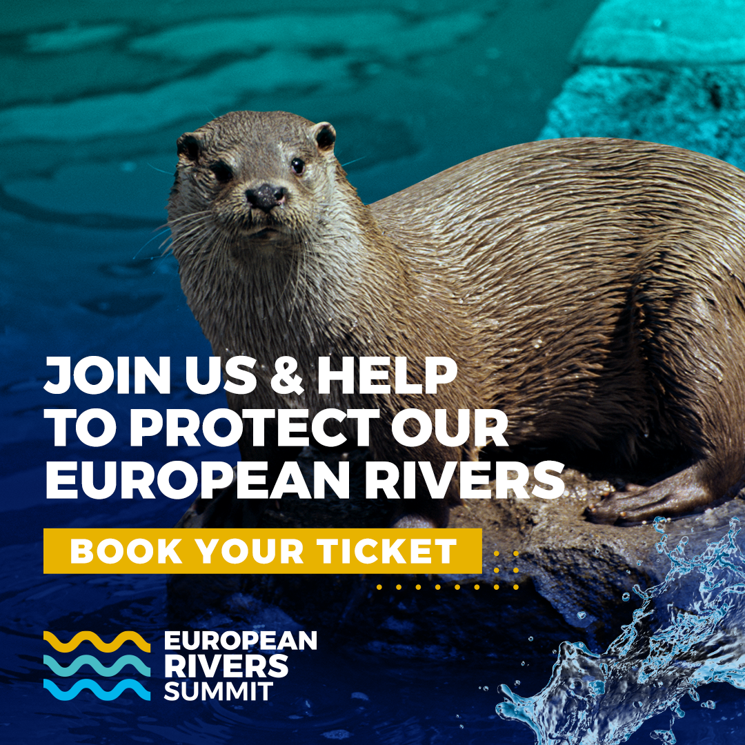 European Rivers Summit 2021 Social Media Post. Download our Media Kit to help us share the European Rivers Summit 2021 content on your social media and other platforms.